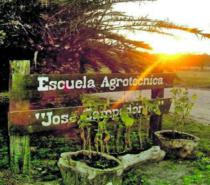 Aprender en contacto con la naturaleza: una oferta educativa integral en la Escuela Agrotécnica